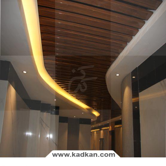 سقف کاذب ساختمان رایان ونک