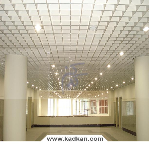 دانشگاه ماهان1